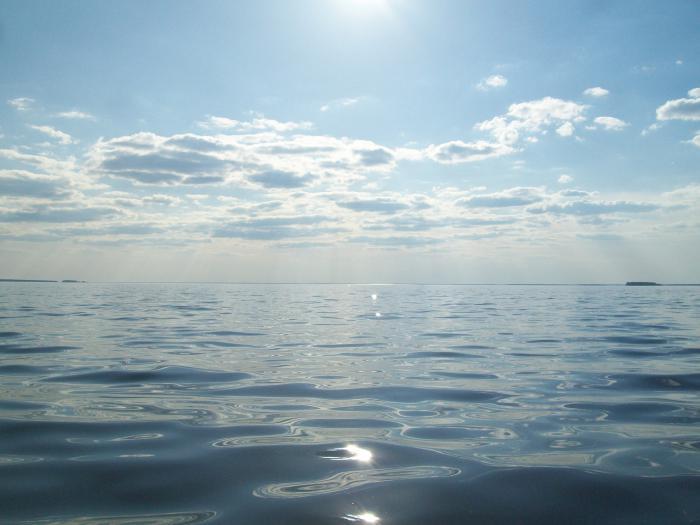 Море!Новосибирское)))