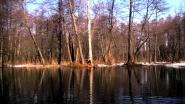 По весенней реке Судогда