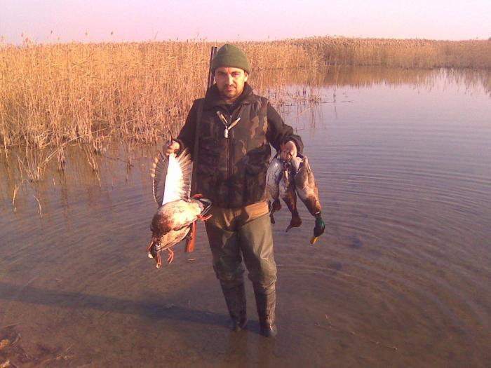 Декабрь 2010