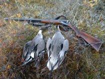Открытие весенней охоты 2011