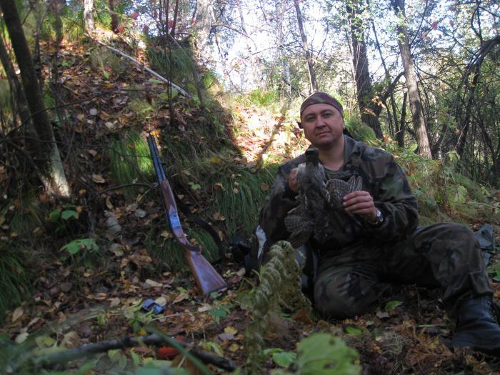 Мало рябчика в Мошковщине в этом году...Это первый, больше не стреляю