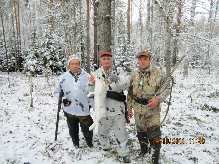 второй зайчик по первому снегу.