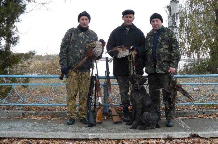 Охота на фазана в Донецкой области.