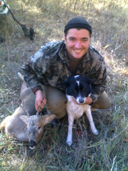 Первая охота моей собаки ,первый результат,зачет!!!
