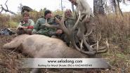 охота на марала в казахстане