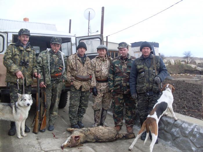 "Украина, Одесская обл ""охота на волка"""