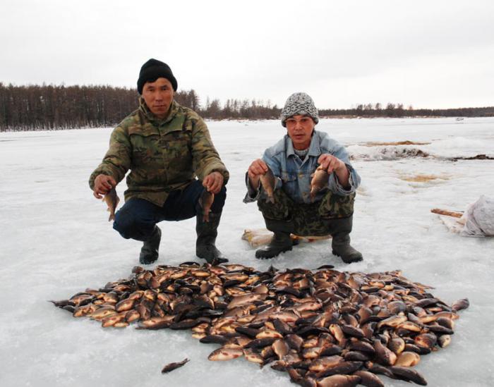 промысловая охота и рыбалка в якутии