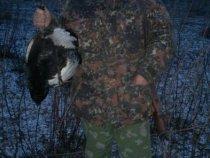 Открытие охоты на косача весна  2012 (на току)