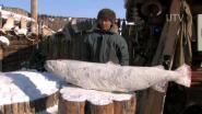 Якутский охотник
