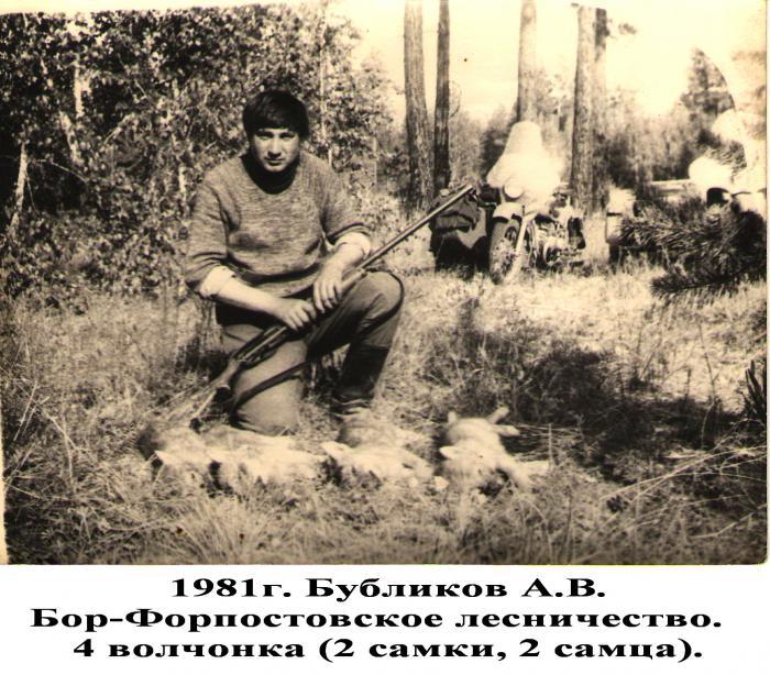 "Отец, на ""вабу"", из мц 21-12 добыл 4 волчонка."