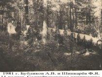 Июль 1981 г. полностью уничтожен выводок волчат.