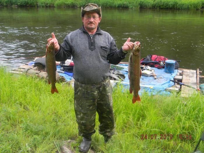 рыбалка на ушаковке видео