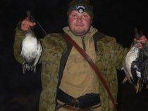 Фаустита. Три выстрела - три утки.