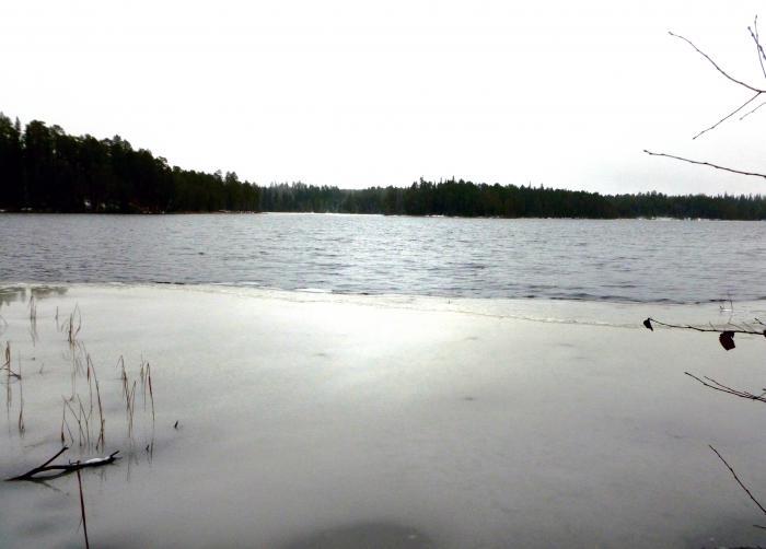 Лесное озеро.