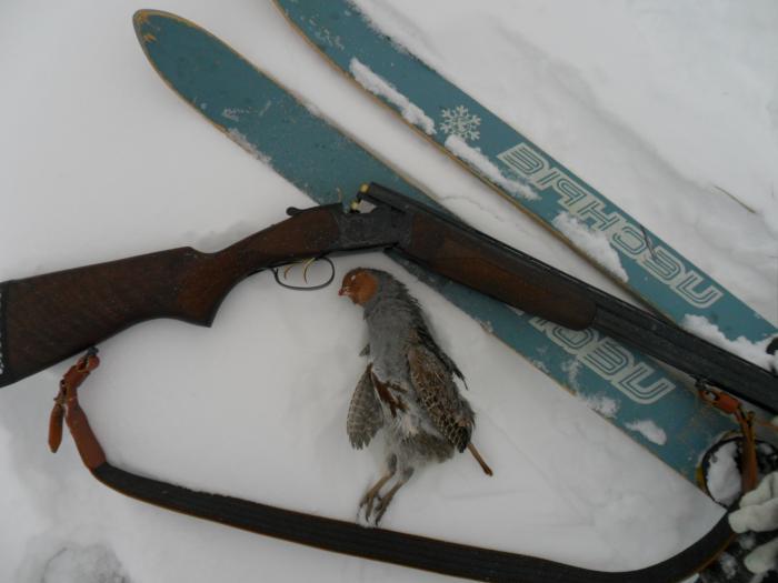 Окропил снежок с новенькой 20-кой!