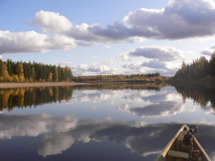 Нерестовая река Вашка. Удора. Коми.
