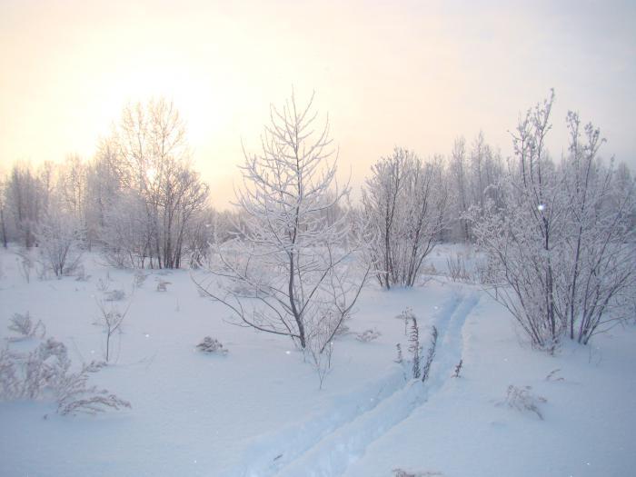 Ох и тяжёлый снежок