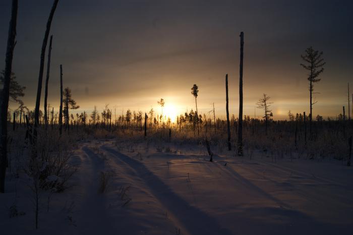 утренний путь к зимовью