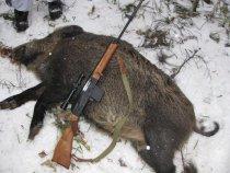 Сайга 410 (охота на кабана)