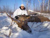 охота на лося, декабрь