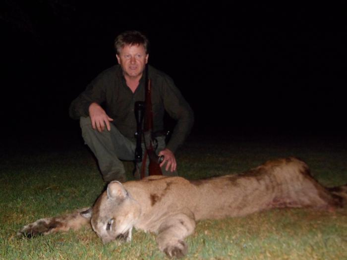 Puma hunt in Argentina