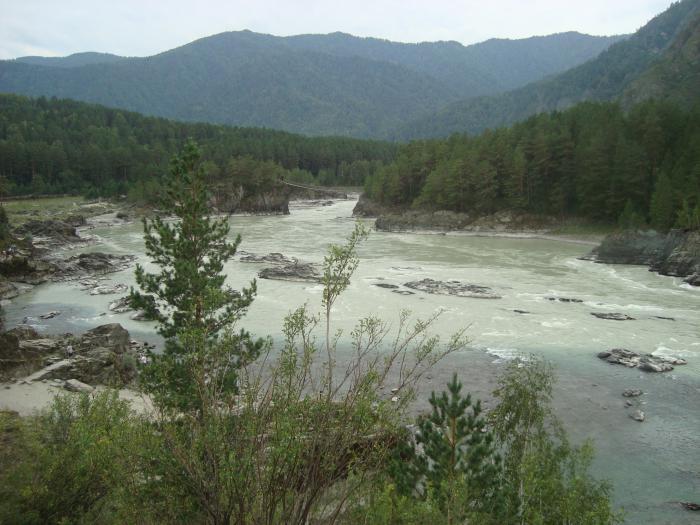 Распадок реки...