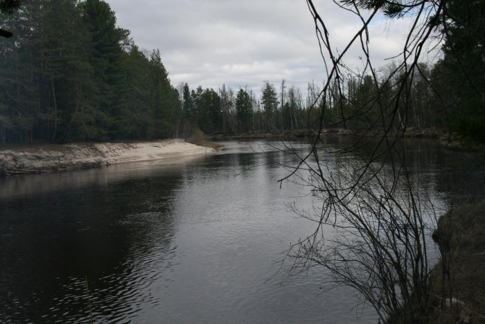 Мрачная,но красивая река....