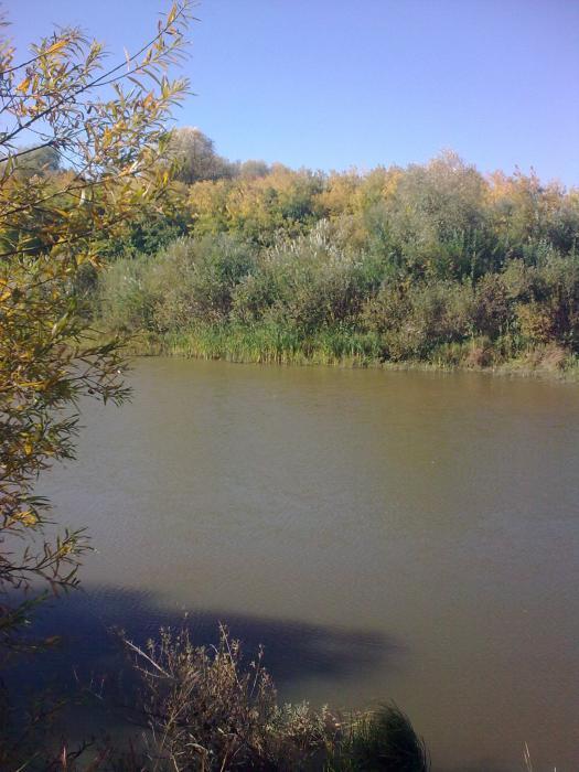 Осень....Река....