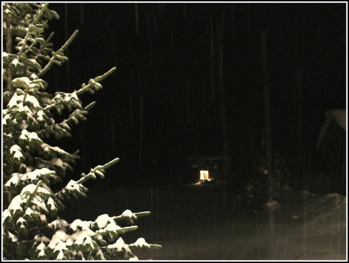 Обыкновенная сибирская, дождливая, зимняя ночь..
