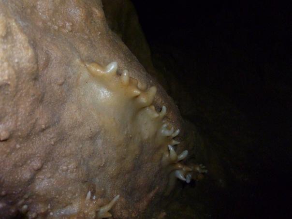 В пещере Женевской