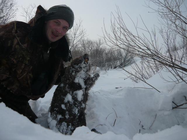 зимой на бобра