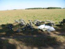 воспоминания о охоте на гуся2009г.на время взяли у знакомых с новосибо!решили проверить их в деле