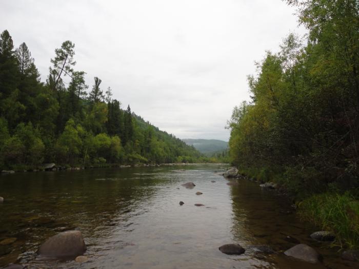 горные реки сибири