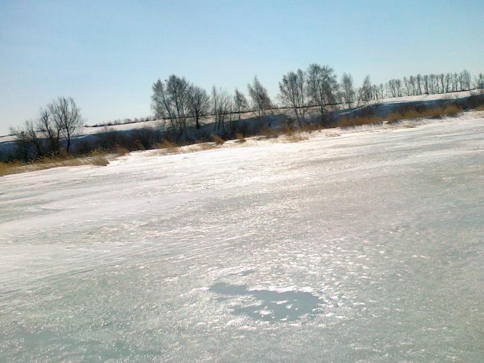 оз. Мостовое. Алтайский край