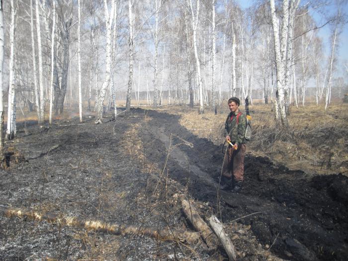 Тушение лесного пожара. Ответ на вопрос.