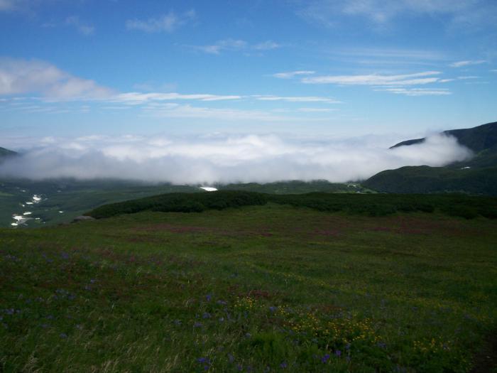 выше тумана