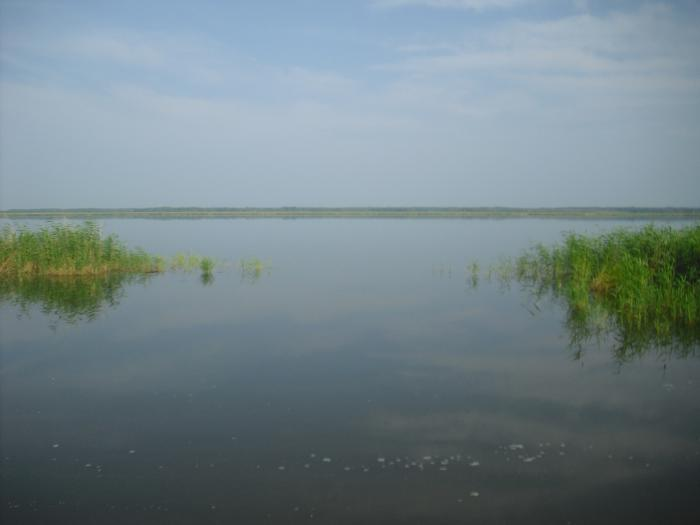 Вот на этом озере я всю жизнь охочусь и рыбачу!
