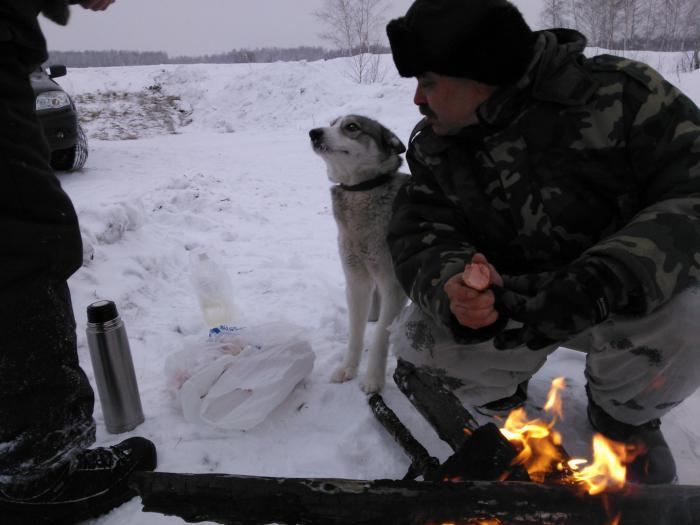 Настоящий охотничий друг