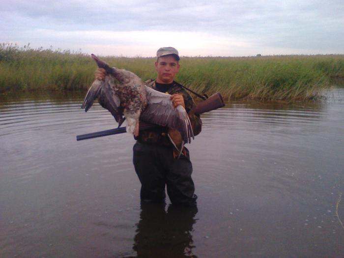 рыбалка на кулундинском озер