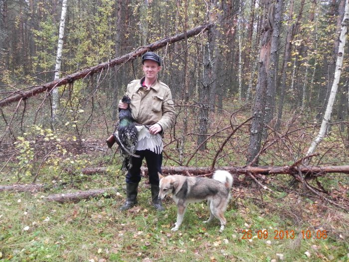 Охота на лиственнице
