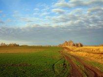 Осенними полями...