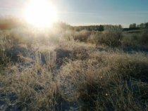 Морозное утро