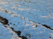 Осыпь на снегу