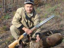 Самец, Сибирской косули