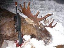 Отличная охота )))