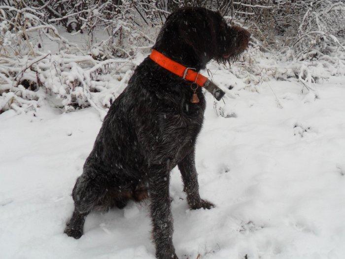 Выехали прогуляться по первому снегу.