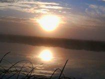 Открытие охоты,туманное утро.