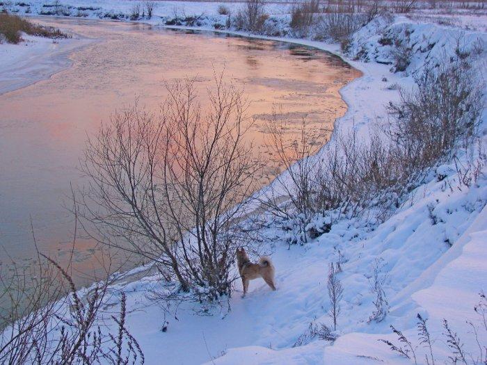У малиновой реки