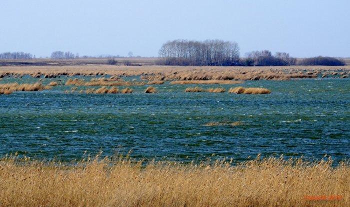 озеро Горькое (Дурнево)