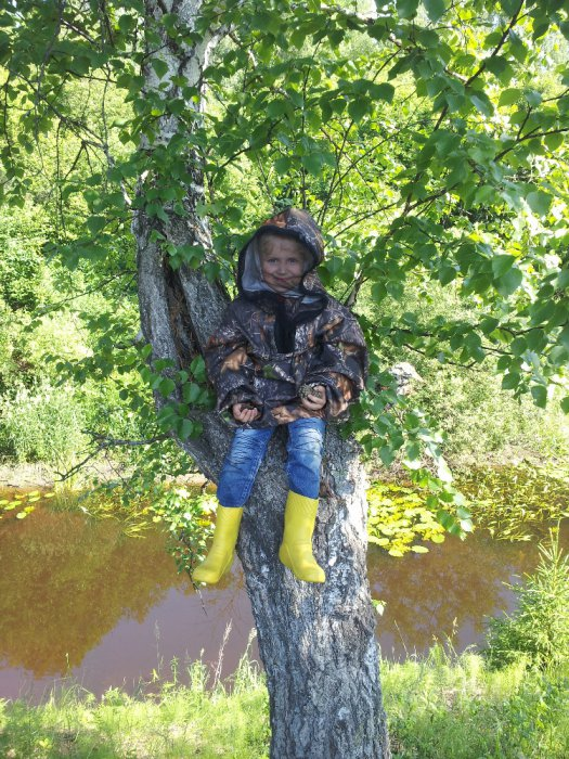 На дереве))